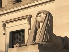 Sphinx sunbathing, Scottish Rite Temple, 16th St. NW, Washington, D.C.