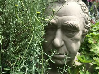 Image of Chelsea Physic Garden. garden chelsea banks rockery physic sirjoseph