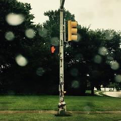 #stoplight #dallas #rain