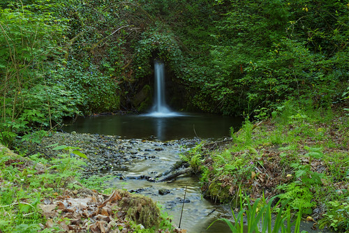 trees green nature water grass creek canon landscape waterfall stream olympia washingtonstate softwater t4i tumwaterfalls 1riverat matthewreichel