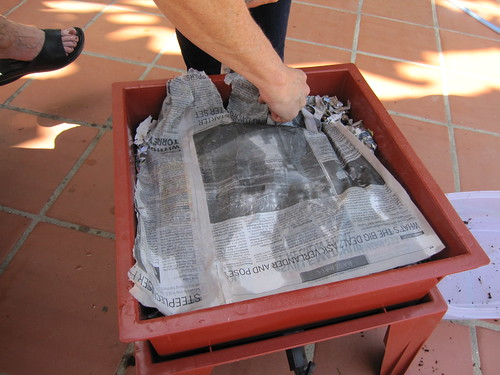 damp newspaper on top