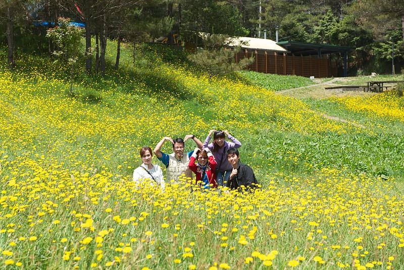 福壽山農場露營區8
