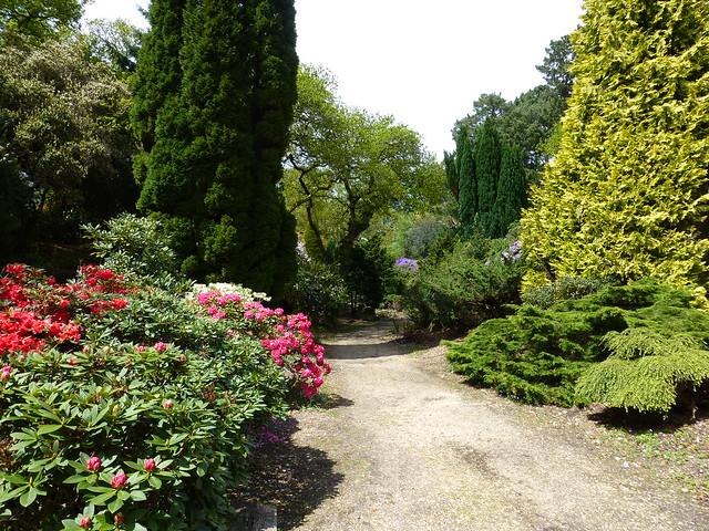 Exbury Gardens_013 - 15 May 2013