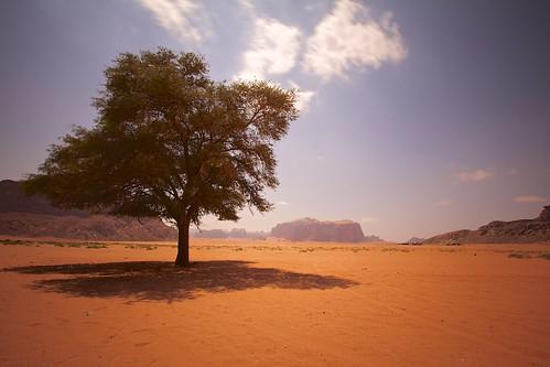 travel canon day desert wadirum jordan clear 1022mm 60d