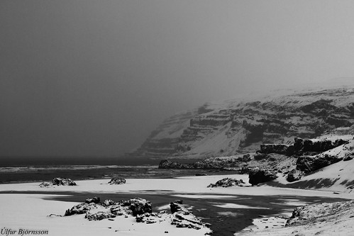 B&W winter #5