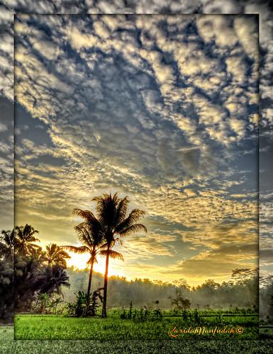 Sarengenge by Karidah Nan Indah