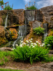 Irises and Waterfalls