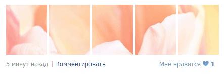 photostatus-05