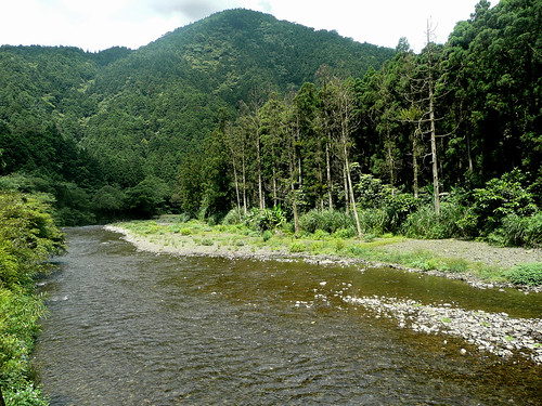 Beautiful views of the Tonghou River (桶后溪)