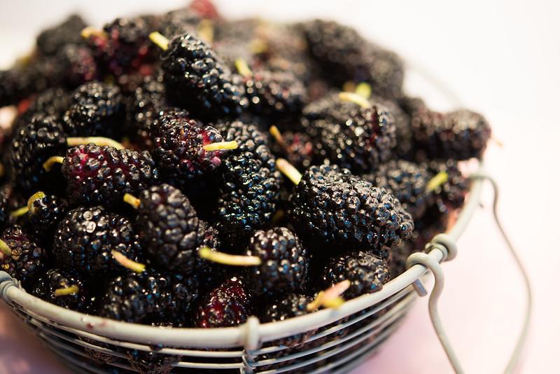 maulbeeren-2