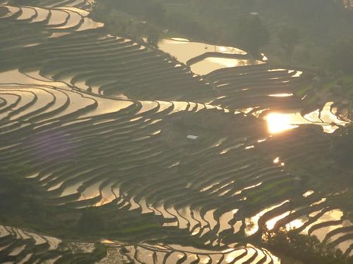 Yunnan13-Yuanyang 24-Bada (5)