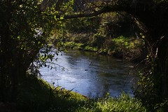 Karangahake River
