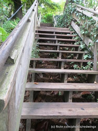 Filbert_woodenstairs