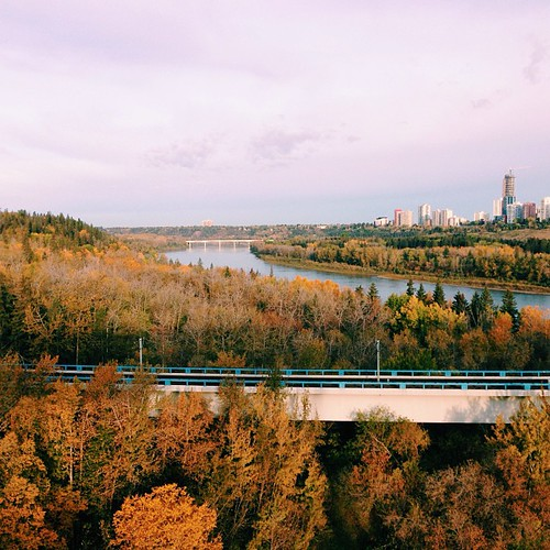 Get outside! Go for a walk, run, bike ride... Autumn #yeg is beautiful.