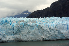 The glacier of Glacier Bay National Park
