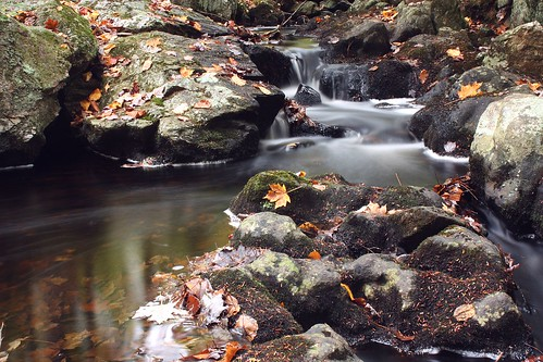 2013_1012Along-A-Fall-Brook0007 by maineman152 (Lou)