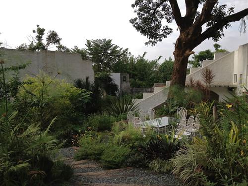 Pinto garden 2