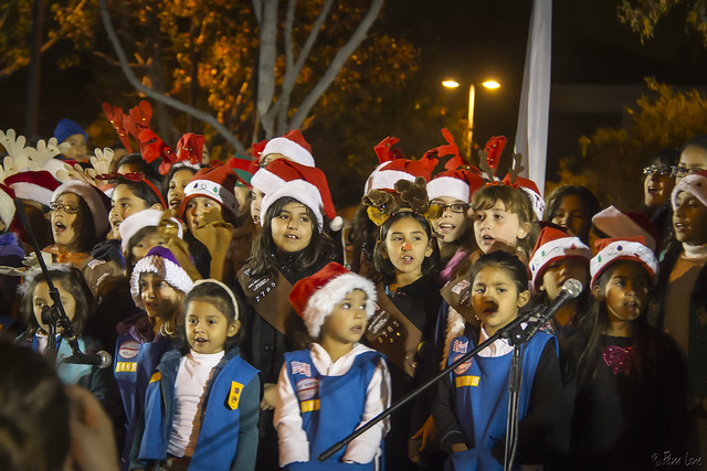 Girl Scouts at Christmas Tree Lighting