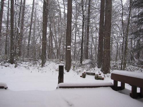 一日中雪が降っています・・・2013.12.18 by Poran111