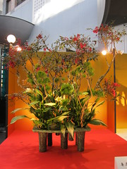 Japanese flower arrangement 55, Ikebana: いけばな