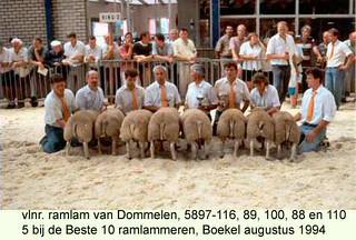 vlnr Ramlam 5897-116 - 89 - 100 - 88 en 100 - 1994