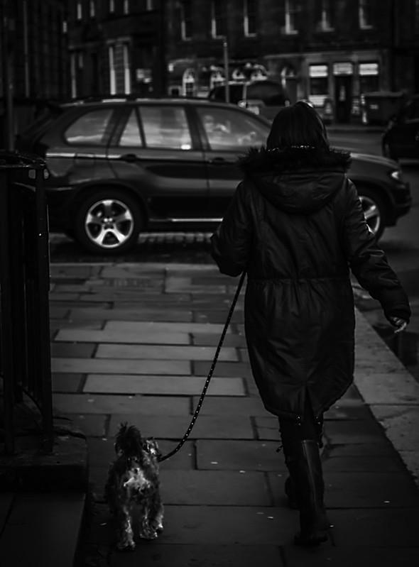 streets_40