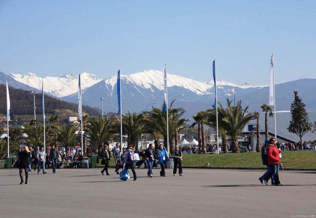 Олимпийский парк: Пальмы и горы
