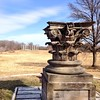 Perfect spring day for a walk in the National Arboretum: http://www.usna.usda.gov