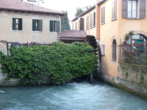 Mills, Treviso