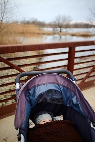 old bridge baby 3 tree creek john three stroller wildlife darby blanket marsh railing jogging month heinz refuge