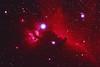 2012-05 Horsehead and Flame Nebulae by Ranny Heflin