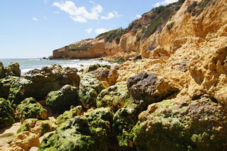 Image of Praia Maria Luísa near Albufeira. ocean costa musgo beach portugal coast playa algarve turismo albufeira acantilado rocas atlántico vegetación océano erosión sedimentos physicalgeography briofitos paisajenatural geografíafísica
