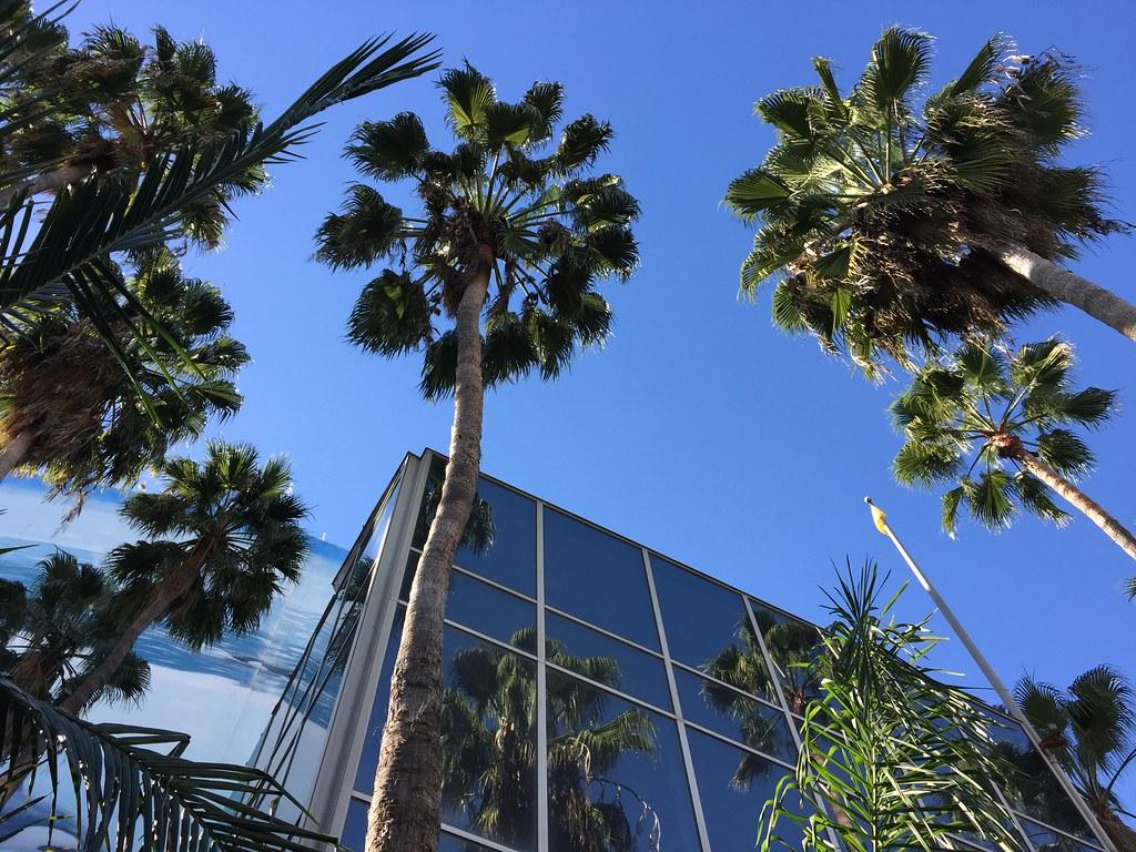 Long Beach Memories
