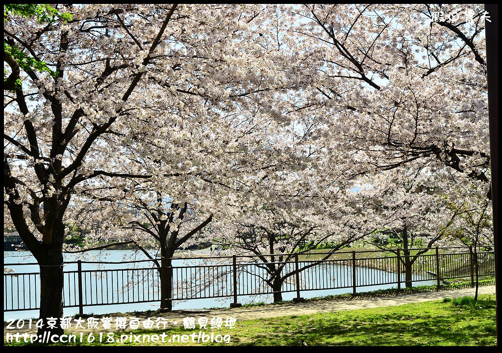 2014京都大阪賞櫻自由行.鶴見綠地DSC_1304