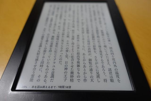 Kindle (2014)