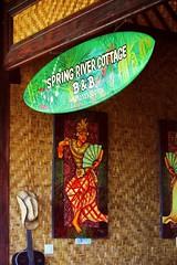 Spring River Cottage,Tabanan, Bali 2014
