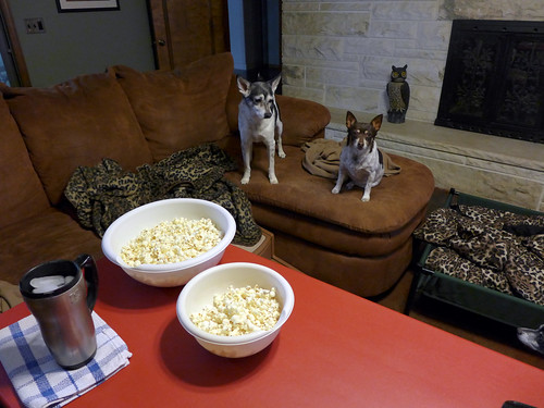 2015-02-05 - Popcorn Time - 0003 [flickr]