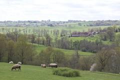 Saint-Jean-Ligoure