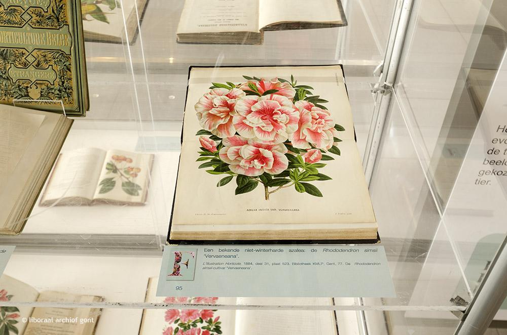 Tentoonstelling Floraliën Gent, Vier eeuwen in bloei