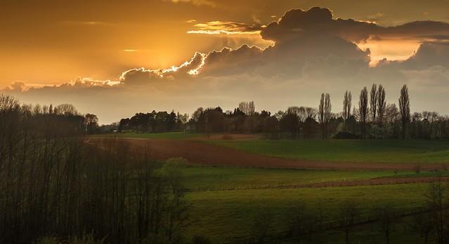 Bocage Flamand / Flemish farmland