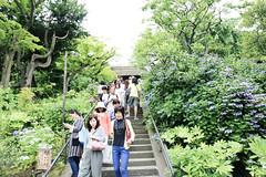 Photo:北鎌倉|東慶寺 By athenakuo