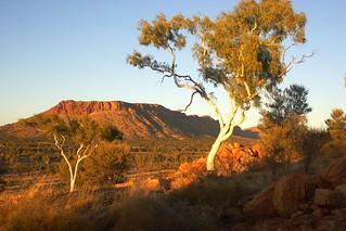 Central Australian Sunrise