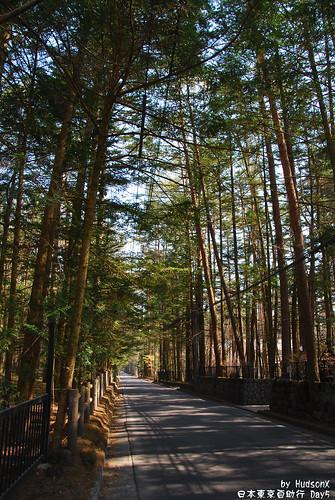 輕井沢最常見的景色