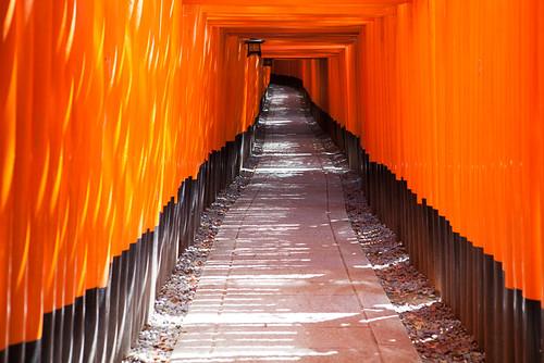 Fushimi Inari-Taisha [Explored]