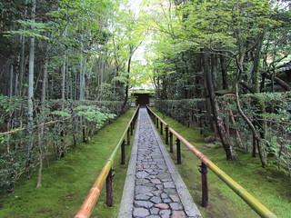 Daitokuji - Koto-In
