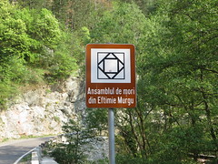 Morile de la Eftimie Murgu - indicator