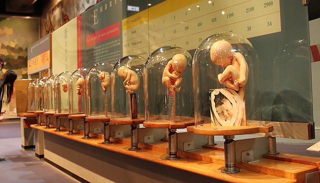 HongKongScienceMuseum8