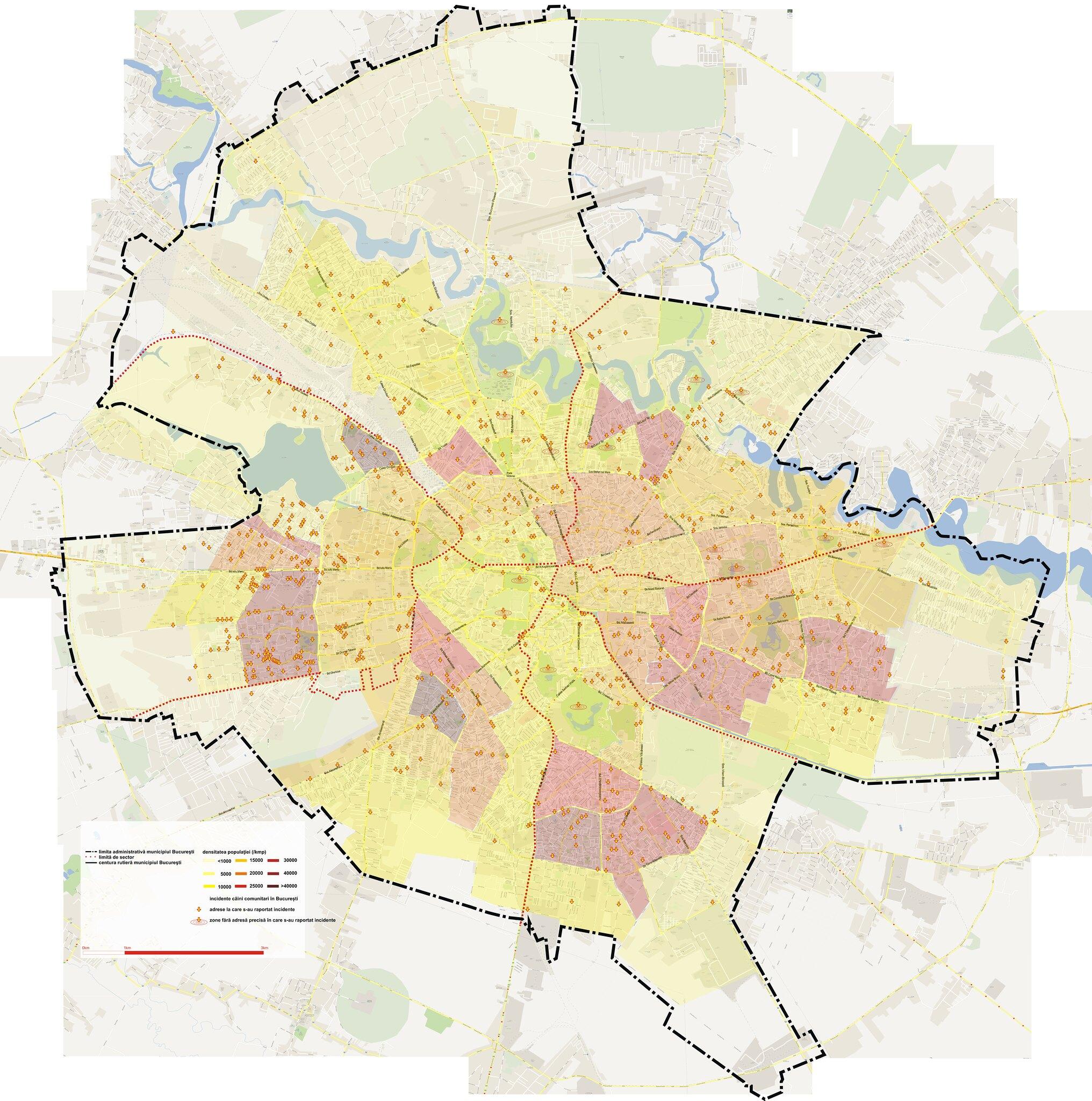 Harta Maidanezilor Din Bucuresti Care Sunt Cele Mai Periculoase