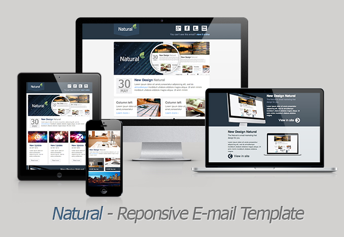 Natural-Responsive Email Template