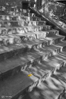 NX300_photography_13